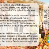 Lake Friendly Tips September