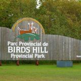 birds hill sign