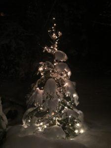christmas_tree_snow_illuminated