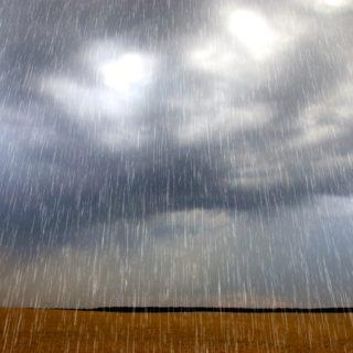 Rain at the fields