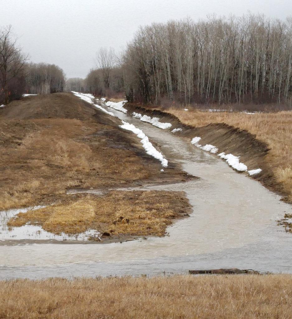 Bunns Creek drainage spring 2019