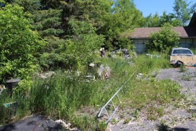 Derelict yard